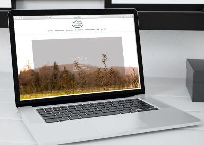 Diseño Web para Vivaz Plant